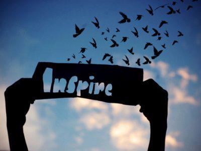 inspire-birds